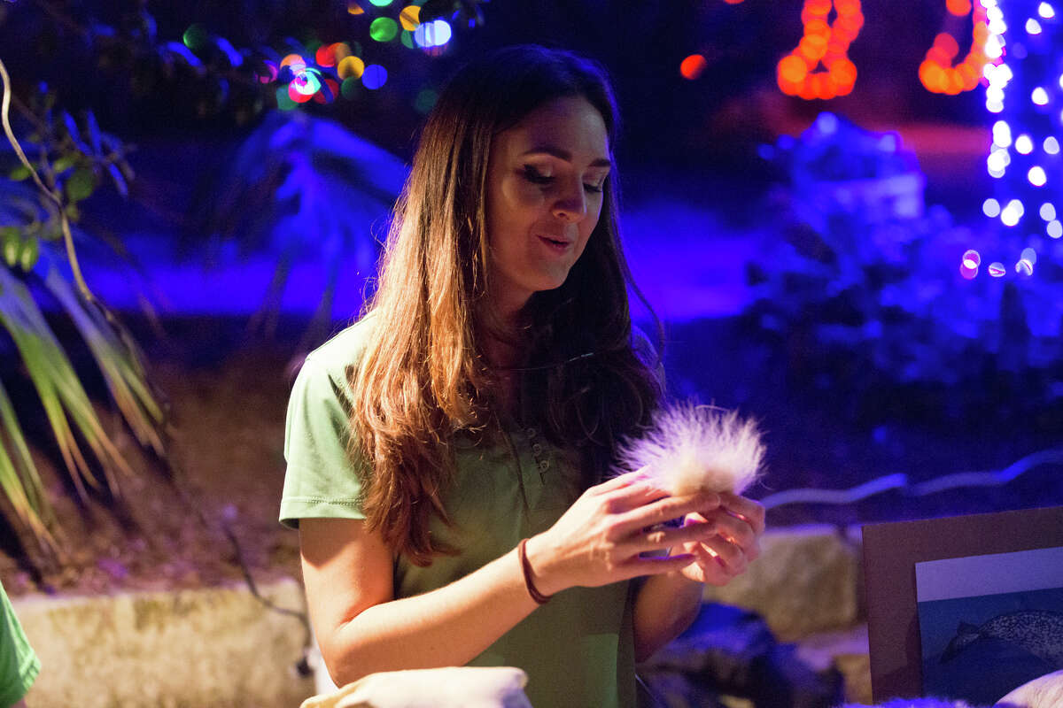 The San Antonio Zoo added some Christmas cheer with the opening of their family tradition
