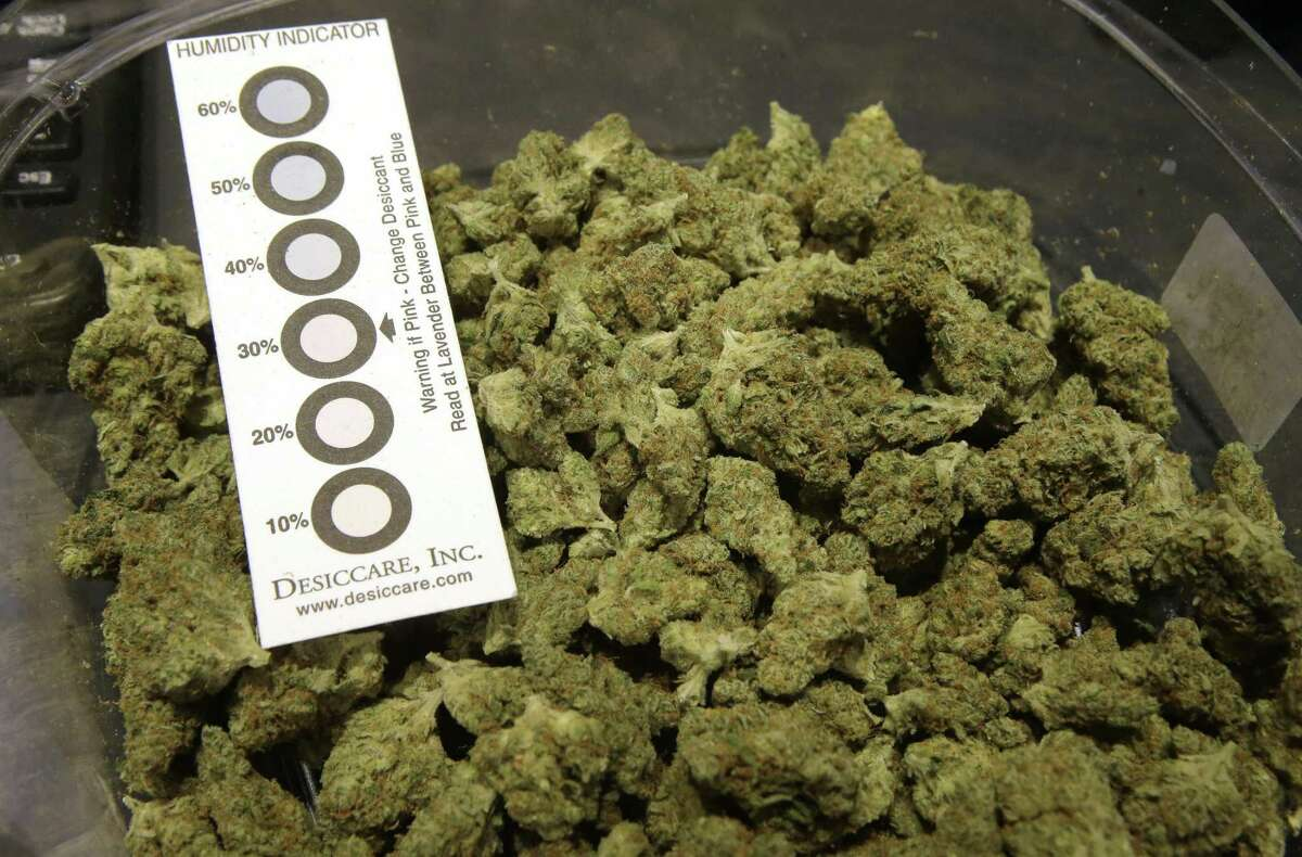 """FILE - In this Wednesday, Oct. 17, 2018 photo a humidity indicator rests in a bowl of a strain of cannabis called """"Walker Kush"""" at New England Treatment Access medical cannabis dispensary, in Northampton, Mass. New England Treatment Access, and another store in Leicester, Mass., have been given the green light to begin selling recreational pot on Tuesday, Nov. 20, making them the first commercial pot shops in the eastern United States. (AP Photo/Steven Senne, File)"""