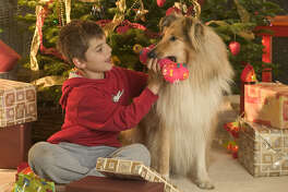 A new survey shows that Americans are expected to spend more then $200 on presents for their pets this holiday season.
