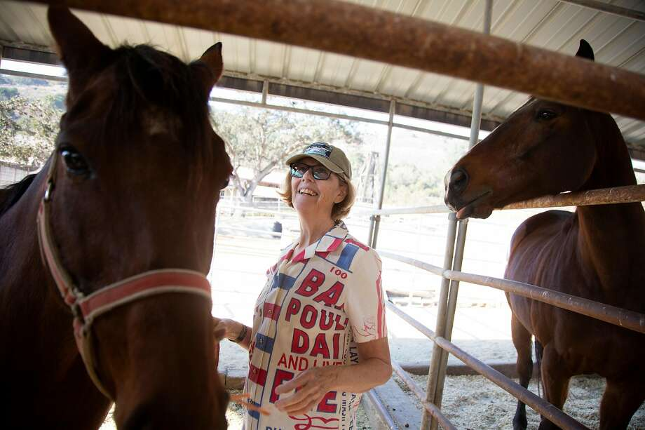 Pulitzer prize winning novelist Jane Smiley visits her horses, Paras, left, and Ned at Holman Ranch on Friday, 11/16, 2018 in Carmel Valley, California. Photo: Patrick Tehan, Special To The Chronicle