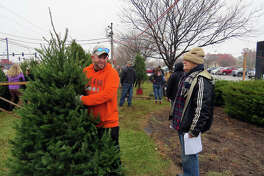 Darrell Gwinup, chairman of the tree committee for the Lion's Club, left, tells a volunteer where to place a tree Monday.