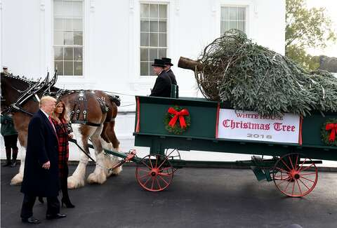 Melania Trump S Blood Red Christmas Trees Mocked With Memes