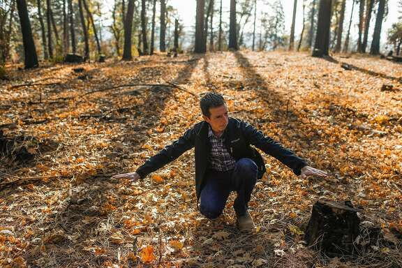 Expert fire geographer Don Hankins gives a tour of a the forest where a prescribed burn was done to help protect the area from wildfire off of Doe Mill Road in Forest Ranch, California, on Monday, Nov. 19, 2018.