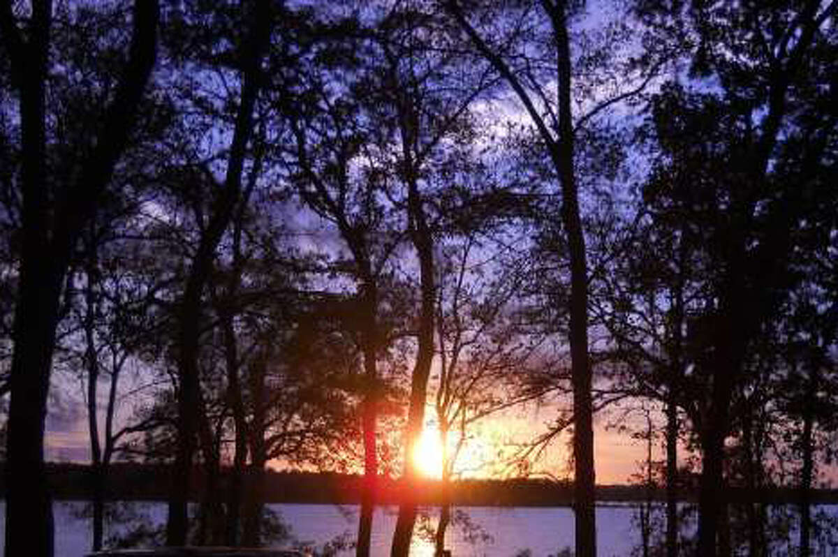 """Fairfield Lake StatePark:123 State Park Road, Fairfield """"Visitors to Fairfield Lake State Park, southeast of Dallas, consistently spot bald eagles,"""" according to the Texas Parks and Wildlife Department."""