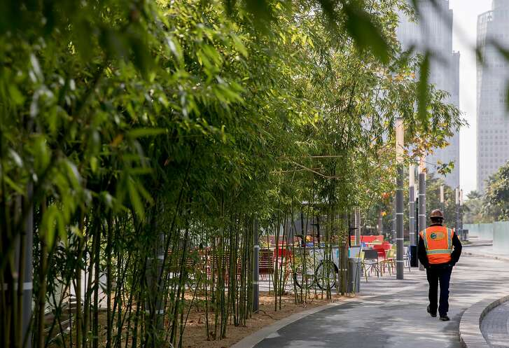 Landscape Vice President Matt Daley walks past a bamboo forest inside  the Transbay Transit Center Park in San Francisco, Calif. Tuesday, Nov. 20, 2018.