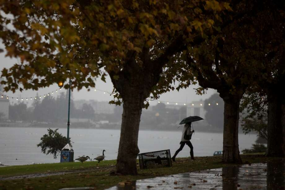 The first significant rainfall of the season helped clear the smoky skies in Oakland, California on Nov. 21, 2018. Photo: SFGate / Douglas Zimmerman