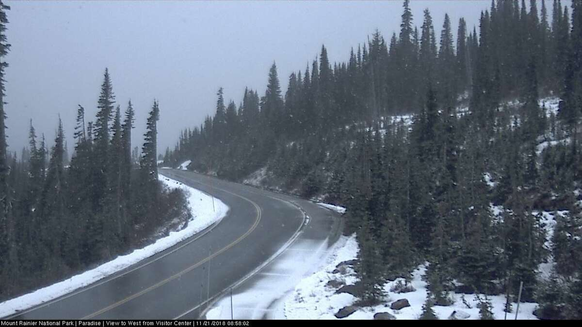 This view of Paradise at Mt. Rainier is expected to get a lot whiter over the next couple of days, NWS said in a tweet.