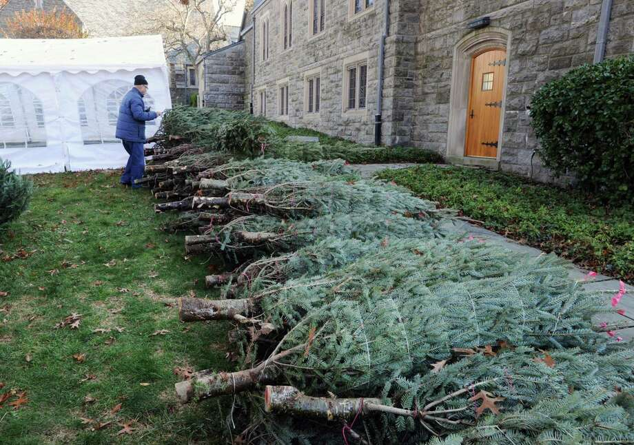 The Christmas Tree & Wreath Sale will open at 9 a.m. Saturday at the First Congregational Church at 108 Sound Beach Ave. The sale will feature premium Fraser fir and balsam fir trees of all sizes, plus beautifully decorated and undecorated wreaths, natural pine roping and premium quality tree stands. All proceeds will go to support six local charities. Local delivery of trees is offered, as well as special treats for dogs who bring their owners to the sale. Photo: File / Hearst Connecticut Media / Greenwich Time