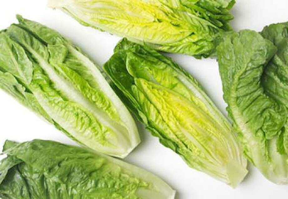 The Centers for Disease Control and Prevention is urging consumers not to eat romaine lettuce and to throw it out if they have it in their refrigerators. It is suspected to be the cause of a massive outbreak of E coli across 11 states including Texas. Photo: Submitted