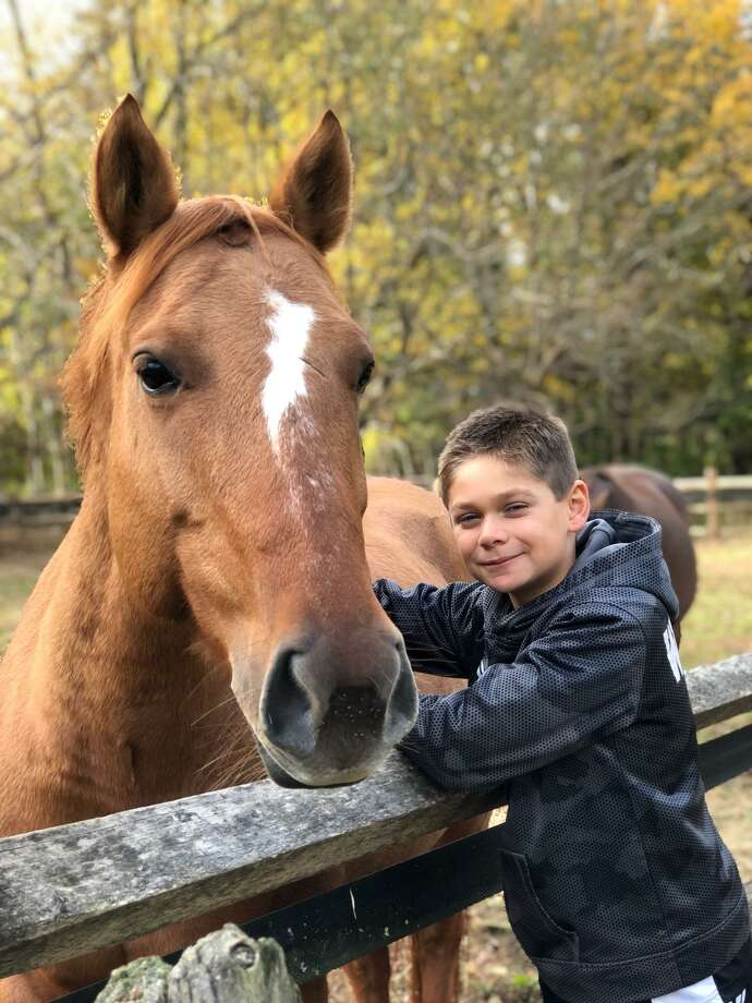 Rising Starr has rescued eight horses this year, doubling the amount saved in 2017. Photo: Contributed Photo / Contributed Photo / The News-Times Contributed