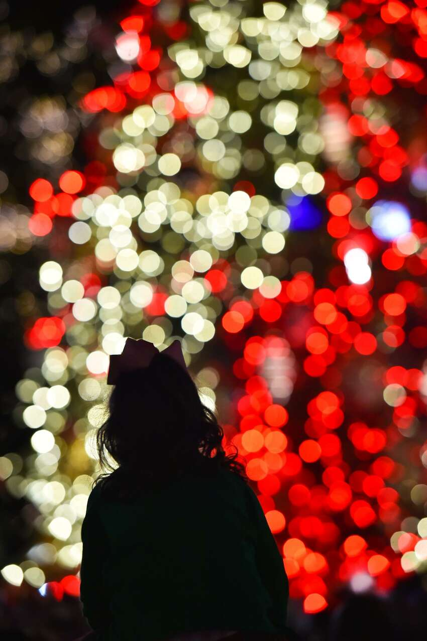 H-E-B Holiday Tree in Travis ParkThe famous display moved from Alamo Plaza, and it will be illuminated on Nov. 24.
