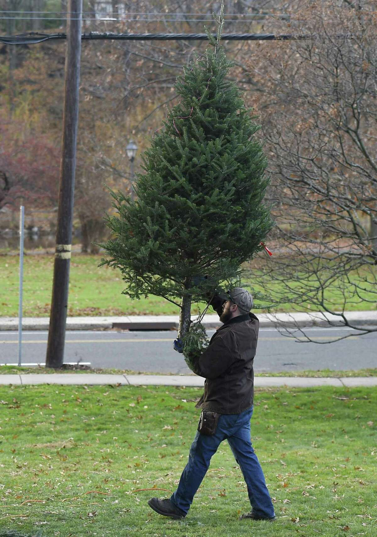 Church volunteerTom Grunow carries a tree at the annual Christmas Tree & Wreath Sale at First Congregational Church of Old Greenwich in Old Greenwich, Conn. Sunday, Nov. 25, 2018. FCCOG is selling 450 top grade New Hampshire trees and 200 wreaths with all benefits going to charities Kids in Crisis, SoundWaters, Pacific House, Building 1 Community, BackCountry Jazz, and The Den for Grieving Kids.