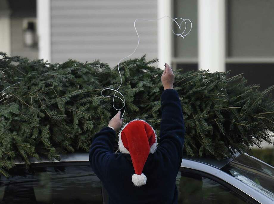 File photo of someone securing a tree to the top of a car. Photo: Tyler Sizemore / Hearst Connecticut Media / Greenwich Time