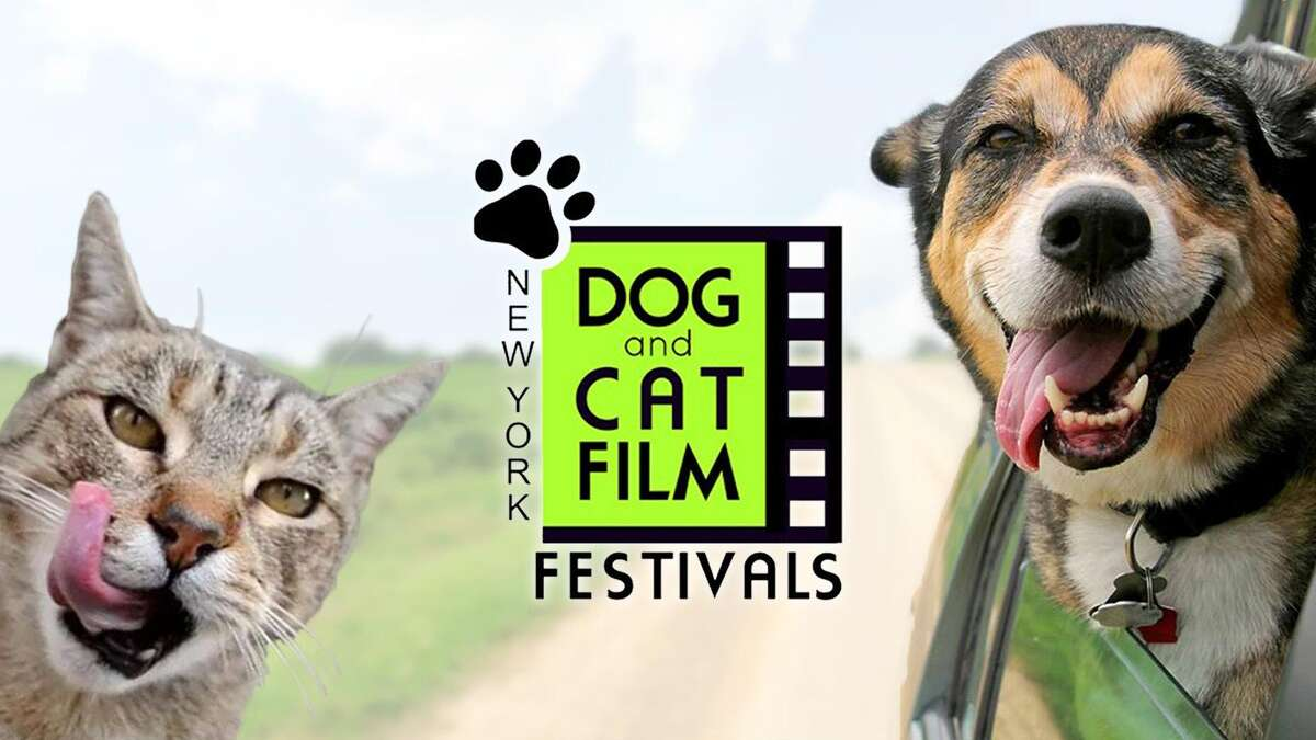 Poster for the New York Dog and Cat Film Festivals.