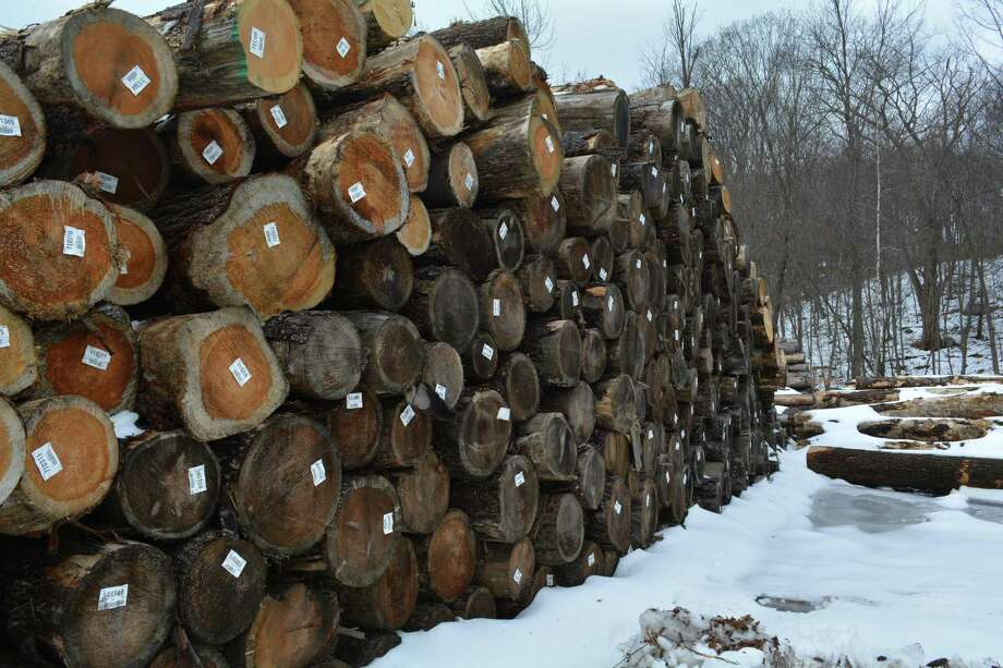 The wood lot at E.R. Himan & Sons in Burlington holds logs salvaged from Sleeping Giant State Park after the May tornado felled hundreds of trees. Photo: Leslie Hutchison  / Hearst Connecticut Media