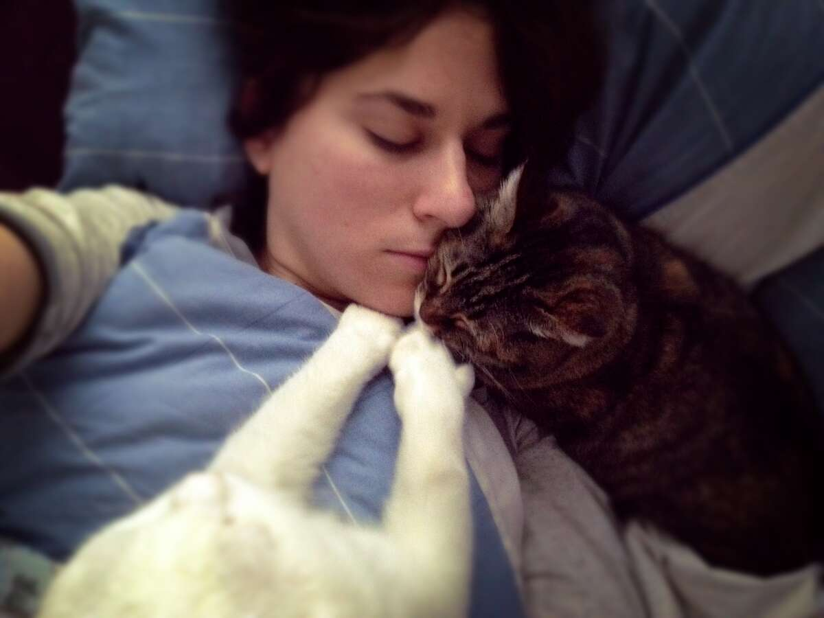 Is your cat(s) preventing you from falling into a deep sleep? Check your mouth for fur in the morning.
