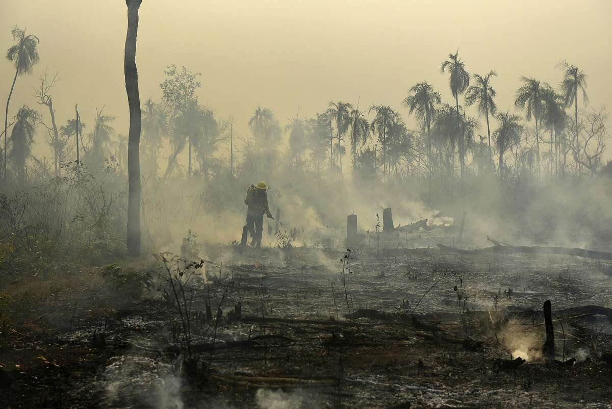 In this Sep. 26, 2017 photo released by Ibama, the Brazilian Environmental and Renewable Natural Resources Institute, members of the National Center to Prevent and Combat Forest Fires (PREVFOGO) fight a forest fire affecting Porquinhos indigenous lands in Maranhao state in Brazil's Amazon basin. Brazil's president-elect Jair Bolsonaro has repeatedly floated a proposal to absorb the environmental ministry into the agriculture ministry, a move that could gut enforcement of existing environmental laws, scientists say. (Felipe Werneck/Ibama via AP)