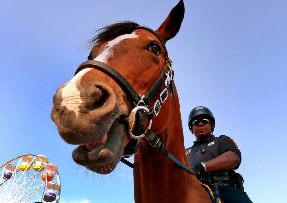 FILE PHOTO — Bridgeport mounted officer Herbie Mack and his horse Boots on patrol at the 18th Annual Gathering of the Vibes music festival at Seaside Park in Bridgeport, Conn. on Friday July 26, 2013. Photo: Hearst Connecticut Media / Christian Abraham / Connecticut Post freelance