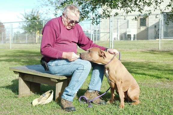 Volunteer Mike Allen offers Toro a treat outside the Friendswood Animal Control shelter.
