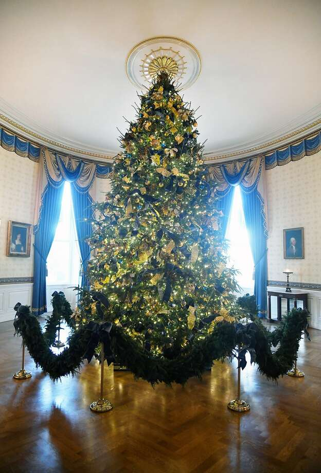 The official White House Christmas Tree sits in the Blue Room of the White House  in Washington, DC, November 27, 2017.  Photo: Olivier Douliery, TNS