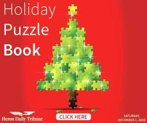 Holiday Puzzle Book 2018