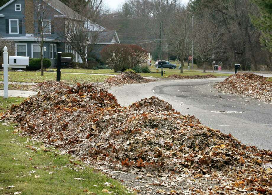 Piles of leaves on the curb along Pinecrest Drive Wednesday Dec. 5, 2018 in Niskayuna, NY.  (John Carl D'Annibale/Times Union) Photo: John Carl D'Annibale, Albany Times Union