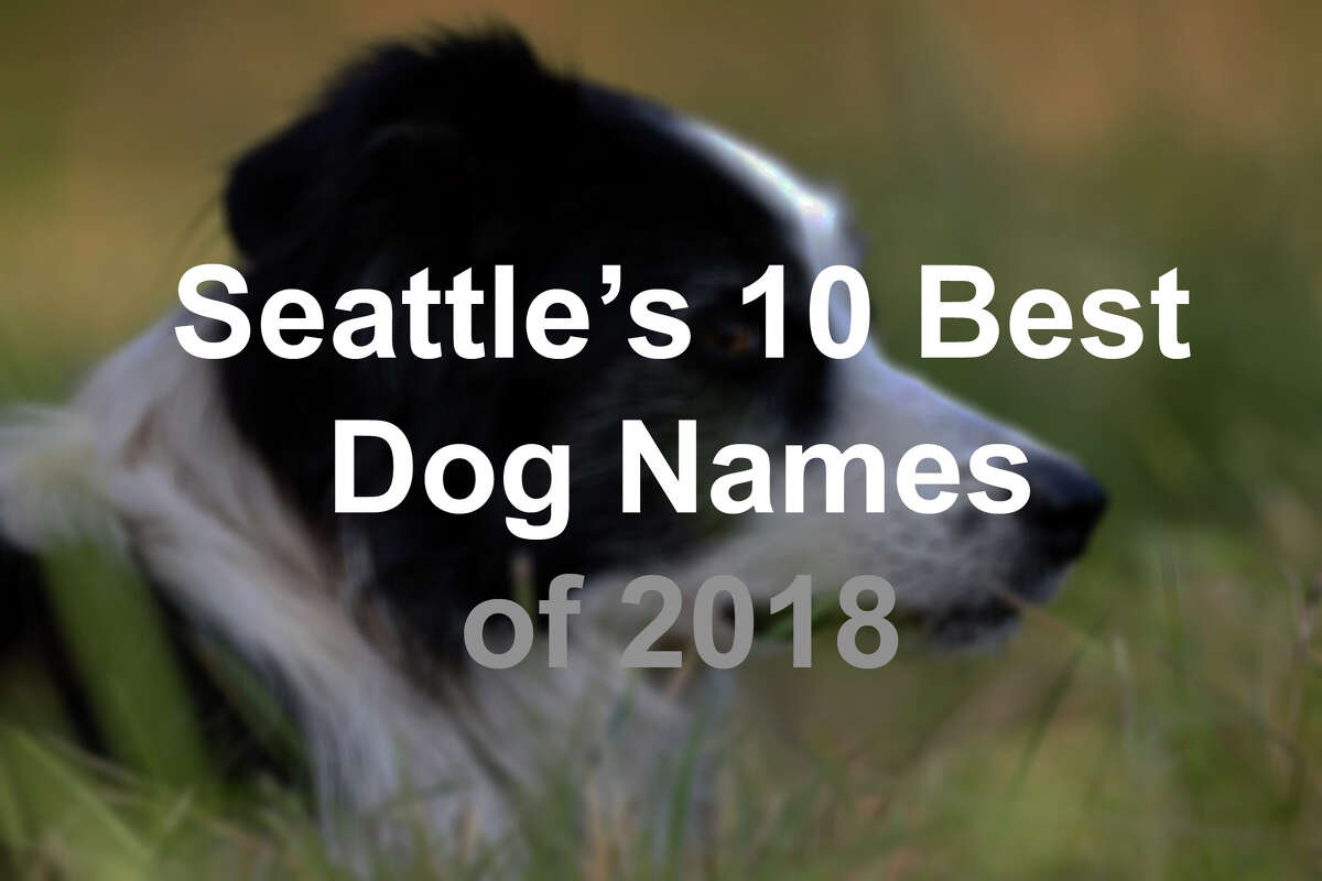 Dog-sitting site Rover released the most popular names this week of its Seattle canine clients. Check out how original your pooch's name is, followed by some other statistics Rover collected from its users.