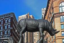In early 2019 the San Antonio Zoo will receive the world's largest rhinoceros sculpture. The 17-foot tall bronze sculpture is currently installed at Brooklyn's Metro Tech Commons in New York City.
