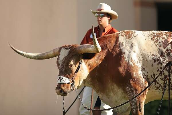 $176 SFO-Dallas Love Field on Alaska Airlines- great for those with longhorn family or friends
