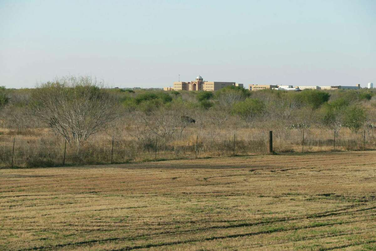 Land surrounding the Texas A&M University - San Antonio campus remains undeveloped as the owner, Verano Land Group seeks to find interested parties on December 4, 2018.