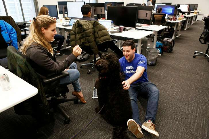 LimePod head of operations Kristin Kaiser with Lime's office manager Mike Wasserman play with Shiner the dog at Lime's headquarters on Tuesday, Dec. 4, 2018, in San Francisco, Calif. The electric scooter company's new headquarters is located at 85 Second St.