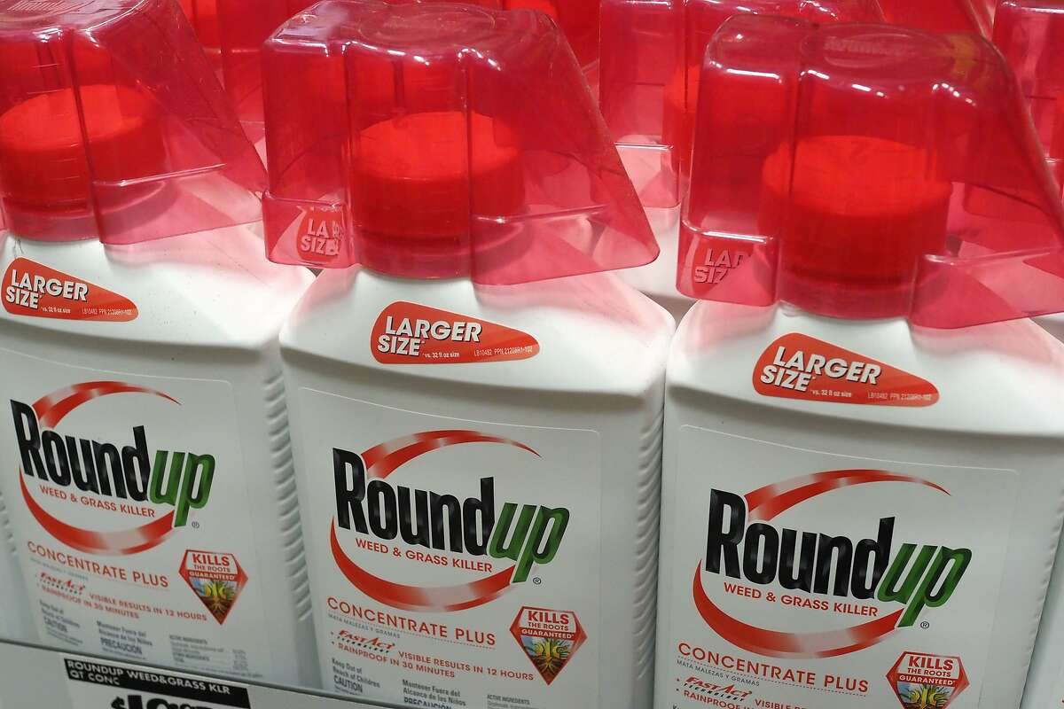 (FILES) In this file photo taken on June 19, 2018 Bottles of Monsanto's Roundup are seen for sale at a retail store in Glendale, California. - Monsanto on November 20, 2018, said it is asking an appeals court to toss out a damning verdict in a landmark Roundup weed-killer cancer trial and grant it another try. The notice is the first step of the appeal process. A cancer-stricken groundskeeper last month accepted a slashed award in the trial, which focused on weed-killer Roundup and a professional version of the herbicide called Ranger Pro. Judge Suzanne Bolanos, who presided over the case in California state court, denied a Monsanto's request for a new trial but cut the $289 million damages award to $78 million to comply with the law regarding how punitive damages awards must be calculated. (Photo by Robyn Beck / AFP)ROBYN BECK/AFP/Getty Images