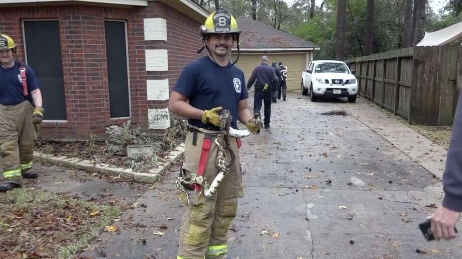 A firefighter poses with a snake rescued from a Conroe house fire. Photo: Scott J. Engle / Montgomery County Police Reporter