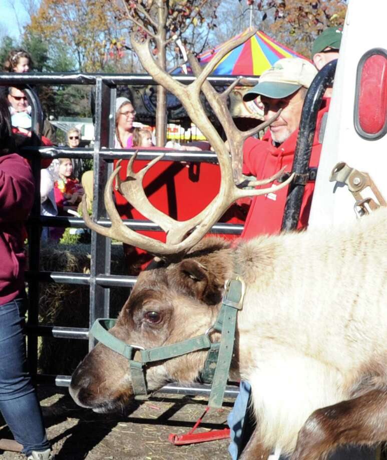 Santa Claus and three live reindeer have set up shop for the month at Sam Bridge Nursery & Greenhouses in backcountry Greenwich for the 10th annual Greenwich Reindeer Festival and Santa's Village. The reindeer will be in town until Dec. 22, but Santa will remain until Christmas Eve, when he has to leave at 3 p.m. to begin making his deliveries worldwide. Santa's Village will be open noon to 6 p.m. Mondays through Fridays and 9 a.m. to 6 p.m. Saturdays. Closed on Sundays. For more information, visit www.GreenwichReindeerFestival.com. Photo: File / Hearst Connecticut Media / Greenwich Time
