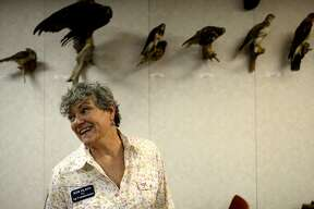 Colonel Kim Olson (USAF Ret.) visited the Sibley Nature Center in Midland July 20, 2018, on a campaign stop during her Democratic run for Texas Agriculture Commissioner. Olson is a retired U.S. Air Force pilot with combat experience who now farms with her husband in North Texas. James Durbin/Reporter-Telegram