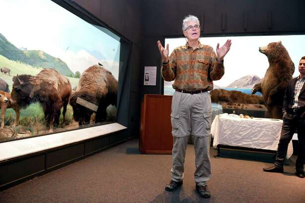 Museum preparator and sculptor Michael Anderson talks about the work involved with the restoration of the North American dioramas at the Yale Peabody Museum of Natural History in New Haven Monday. At right is Collin Moret, assistant to museum preparator.