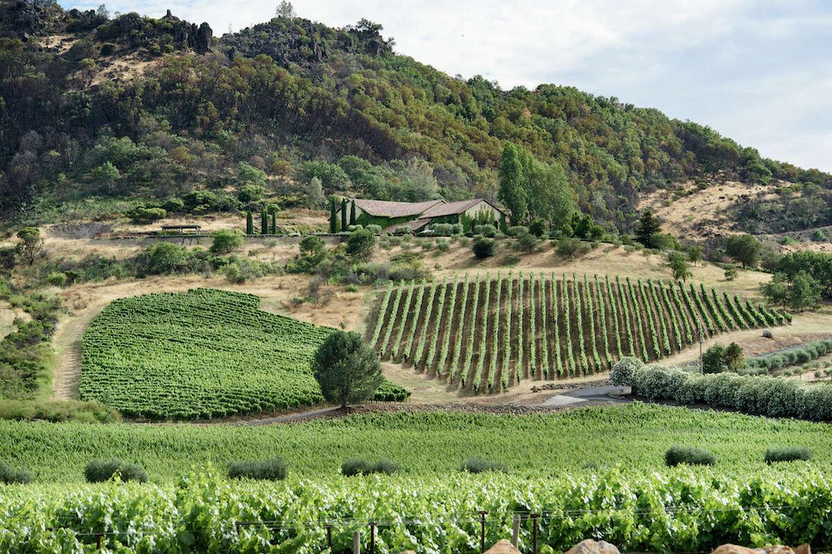The vineyards at Antica, high on Napa's Atlas Peak.