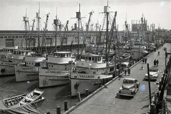 Sardine fishing boat fleet at Fisherman's Wharf, August 28,1949
