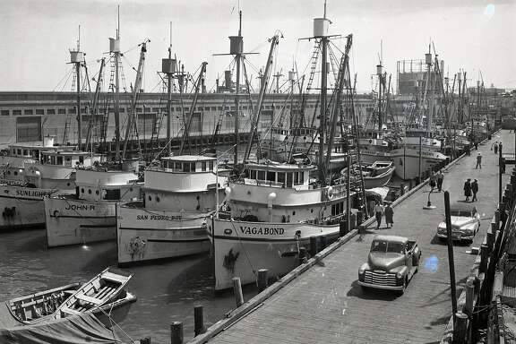 Sardine fishing boat fleet at Fisherman's Wharf, August 28,1949