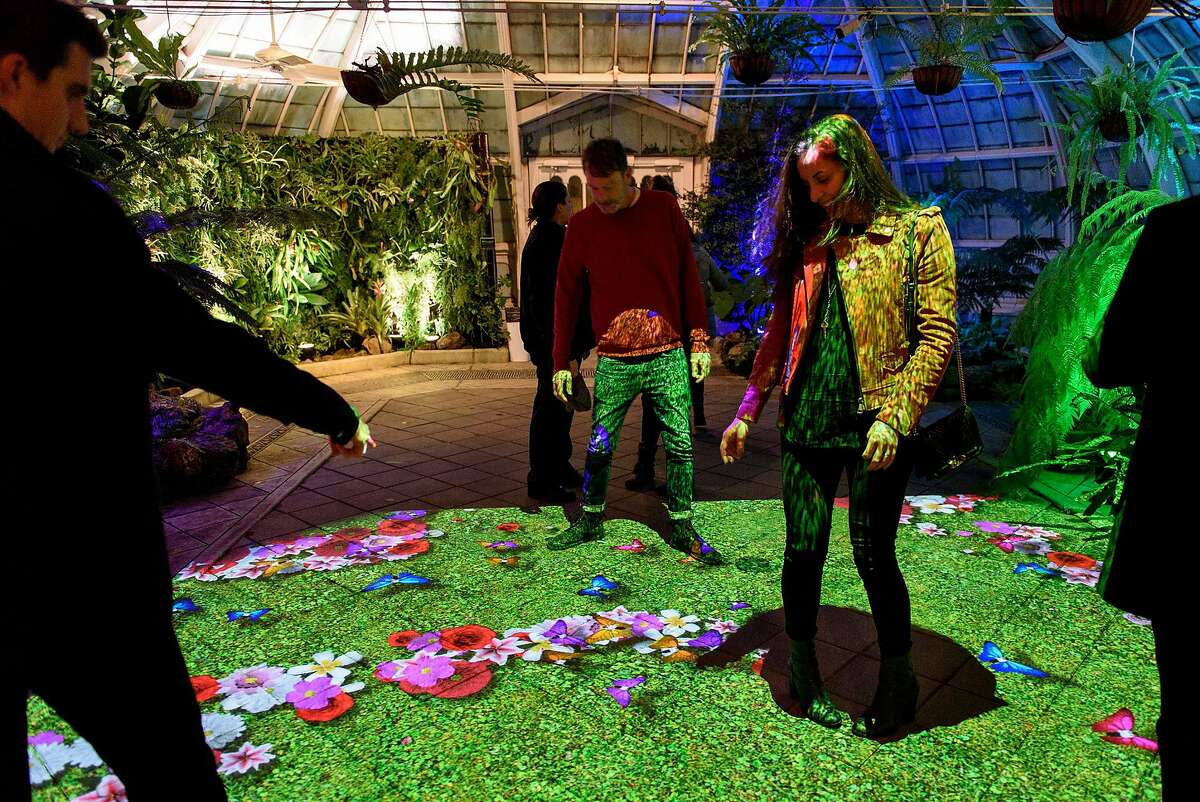 """Guests walk across a garden video projection at the new """"Night Bloom"""" installation at the San Francisco Conservatory of Flowers in San Francisco, California, on Friday, November 30, 2018."""