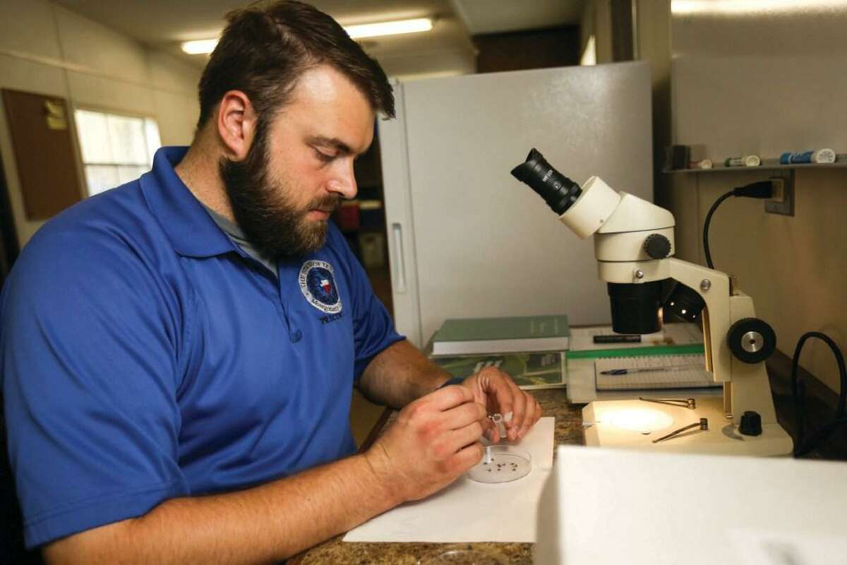 Officials with the Montgomery County Public Health District are reminding residents take precautions against West Nile Virus as summer begins. Justin Fausek, with Commissioners Office Precinct 3, demonstrates how mosquitoes are tested for West Nile virus in this file photo.
