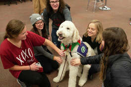 Students gather round Izzy the Goldendoodle in Lovejoy Library. From left are Fairen Woolard and Aleah Glodich and Austin Uhls of West Frankfort; Brooke Snyder of Alton; and Christa Becherer of Kaiserslautern, Germany.