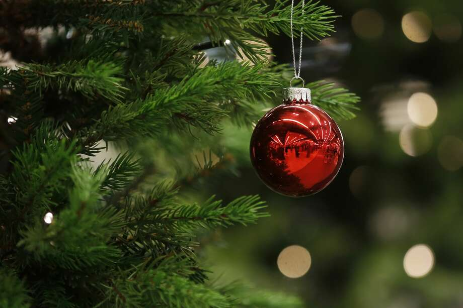 recycling your christmas tree is now easier than ever