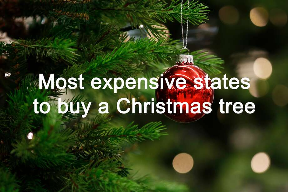 It\'s true. Christmas trees did get more expensive this year ...