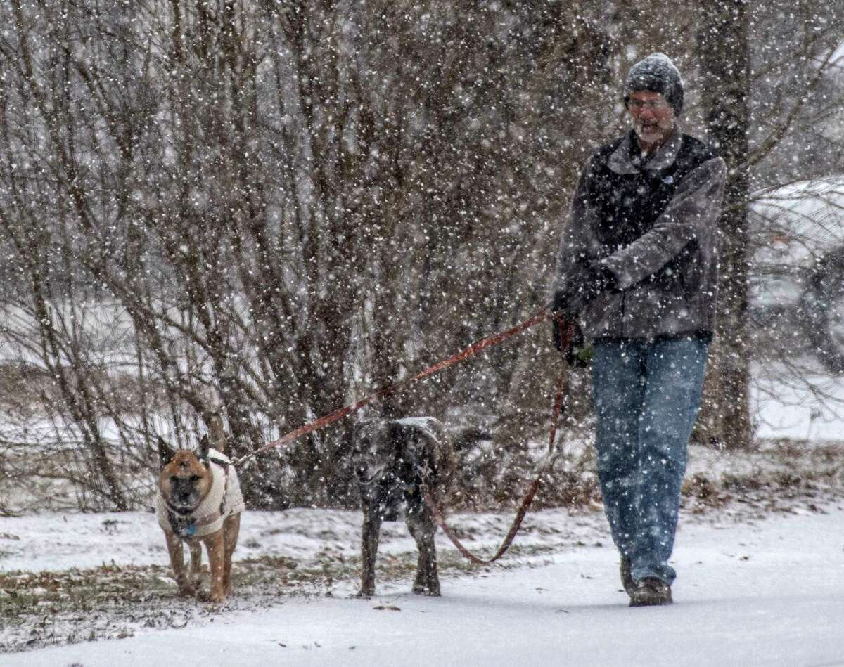 Jerry Furey walks his pups McKenna and Blue in a snow squall this morning on Almeria Road Thursday Dec. 13, 2018 in Schenectady, N.Y. (Skip Dickstein/Times Union)