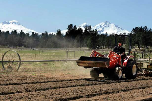 FILE - In this April 23, 2018 file photo, Trevor Eubanks, plant manager for Big Top Farms, readies a field for another hemp crop near Sisters, Ore. Hemp is about to get the federal legalization that marijuana, its cannabis cousin, craves. That unshackling at the national level sets the stage for greater expansion in an industry seeing explosive growth through demand for CBDs, the non-psychoactive compound in hemp that many see as a way to better health.