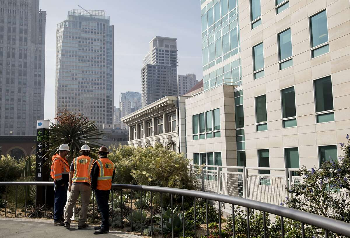 (From left) Landscape Maintenance Foreman Robert King, Senior Project Manager Brian Thompson and Landscape Vice President Matt Daley check out a group of weather resistant plants while walking through the Transbay Transit Center Park in San Francisco, Calif. Tuesday, Nov. 20, 2018.