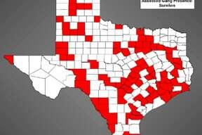 Sureños Threat ranking: Tier 2 Counties near Midland affected: