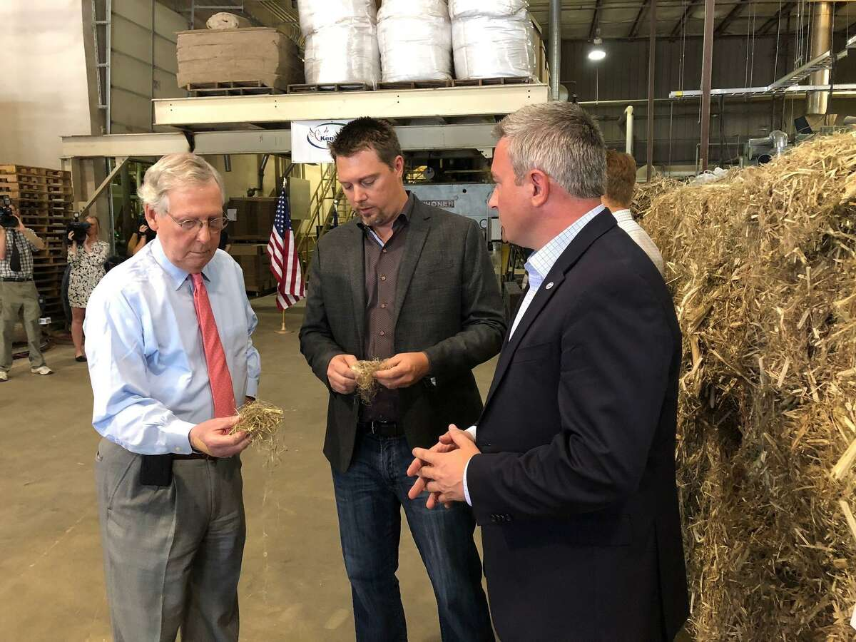 FILE - In a Thursday, July 5, 2018 file photo, Senate Majority Leader Mitch McConnell, left, inspects a piece of hemp taken from a bale of hemp at a processing plant in Louisville, Ky. McConnell has guaranteed that his proposal to make hemp a legal agricultural commodity, removing it from the federal list of controlled substances, will be part of the final farm bill. (AP Photo/Bruce Schreiner, File)