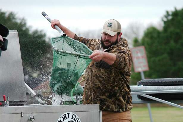 Fish hatchery technician Hunter Adams holds a net full of rainbow trout to stock in the lake at Burke Crenshaw Park in Pasadena through Texas Parks and Wildlife Department's Neighborhood Fishin' program.